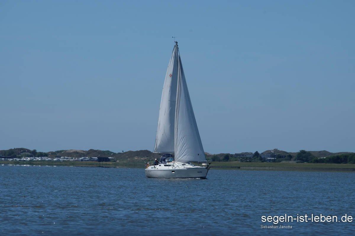 Segelboot Wattenmeer